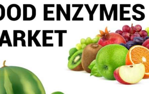 Food Enzymes Market Size, Share, Business Analysis and Growth Forecast to 2027